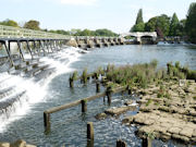 The long Thames weir at Teddington which stages across the river.
